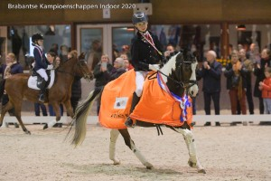 Thomas Driessen met Bonty Brabants kampioen C/B dressuur